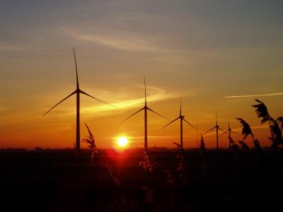 May 2006: Deeping St Nicholas Wind Farm – eight 2 megawatt turbines 100 metres tall, 930 metres away (Photograph © julian.t.davis 2007)