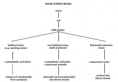 Figure 3. Model of directly transmitted stress effects of noise (Ising et al., 1990).